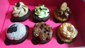 Top (L-R): Mocha-Mocha, Chocolate Mint and Choc Chip Bottom (L-R): Cookies & Cream, Double Chocolate and Sea Salt Caramel