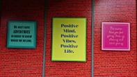 Positive Vibes, Positive Minds